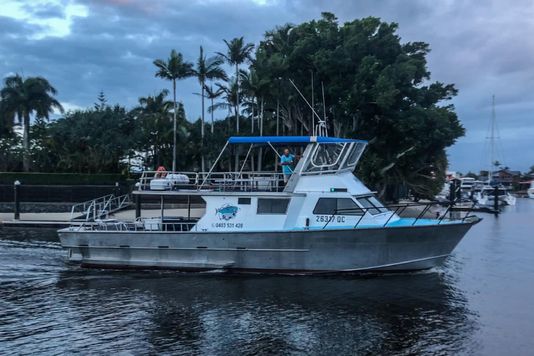 All About deep sea fishing charters Queensland Paradise Fishing Charters