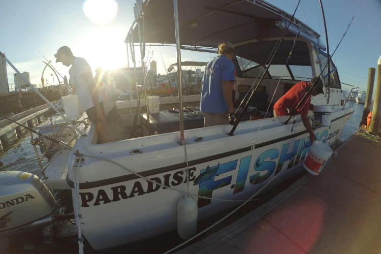 Full-Day Fishing Charter Brisbane and Gold Coast – Paradise Fishing Charters